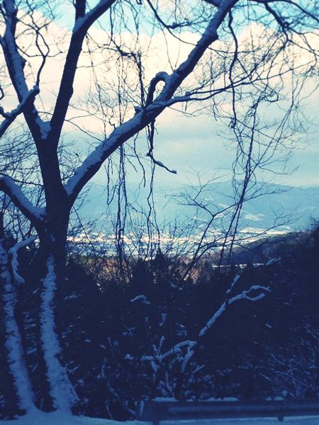 2013-01-01 14.38.37.jpg_effected.png