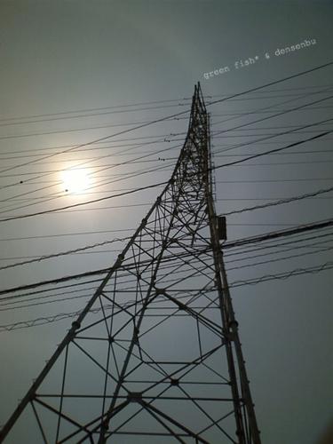 電線06.jpg
