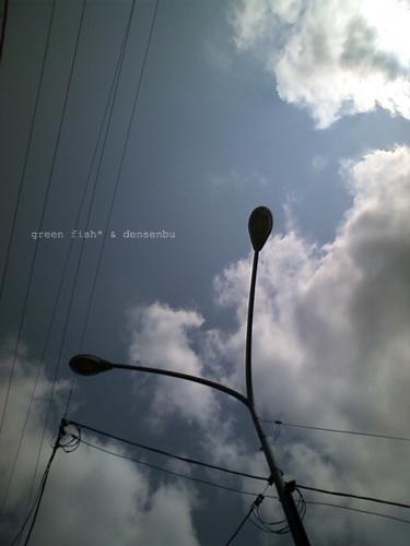 電線09.jpg