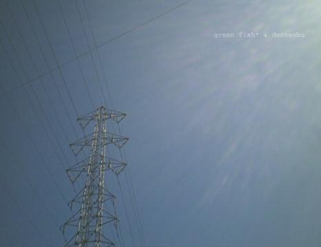 電線17.jpg